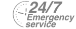 24/7 Emergency Service Pest Control in Winchmore Hill, N21. Call Now! 020 8166 9746