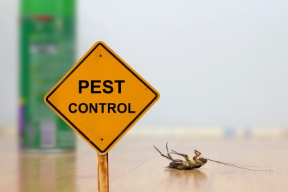 Pest Contol in Winchmore Hill, N21. Call Now 020 8166 9746
